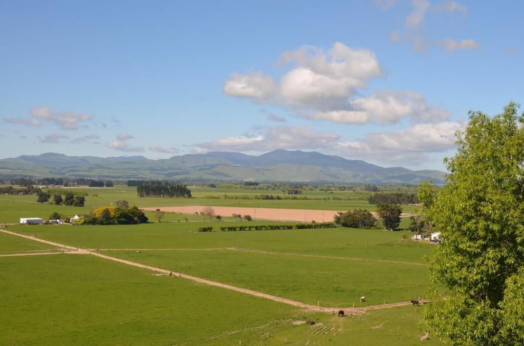 Nova Zelândia Rural